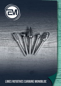 Catalogue carbide burs